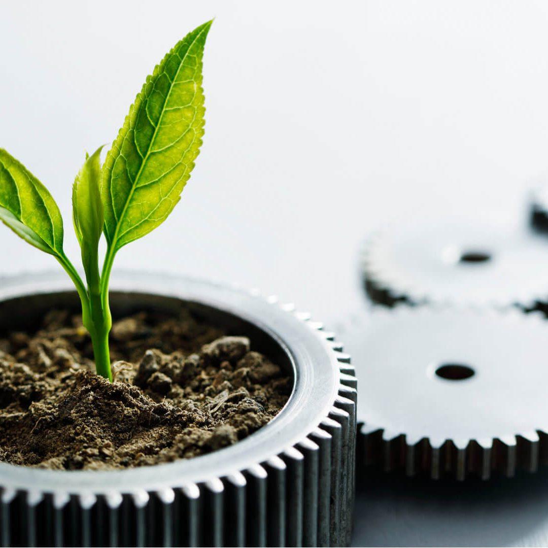 Sustainability Leaf in sprocket